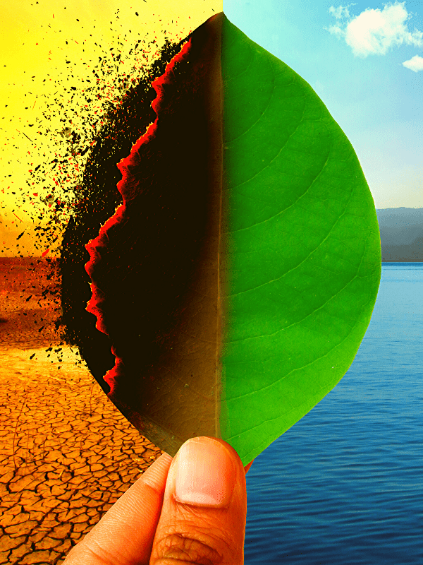 Global Warming: Fact And Fiction
