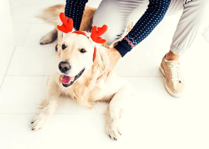 Compassionate Christmas