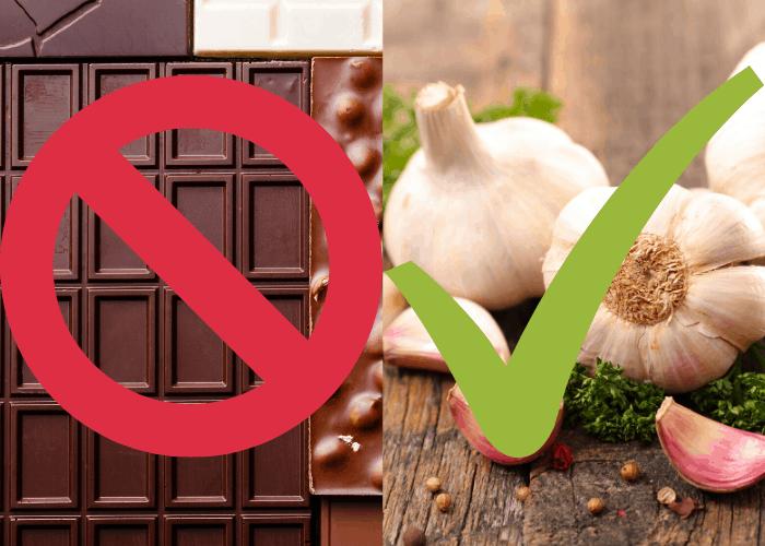 No to chocolate, yes to garlic!